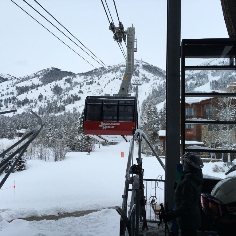 Jackson Hole Jan 30 - Feb 6th 2016