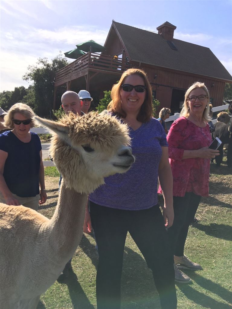2018 Alpaca Enchanted Evening at the Canzelle Alpaca Farm.  Participants from the club's 2018 Live Service Auction event.