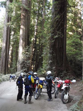 Enjoyable dual sport ride in the Northern California coast near Oregon on August 1 - 2, 2009.  Cruise dirt roads through the redwood groves.  Enjoy beachside views and mountain top lookout vistas.  Gr