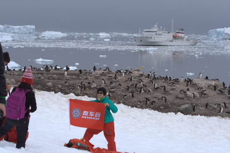 Chinese show the flag to the penguins