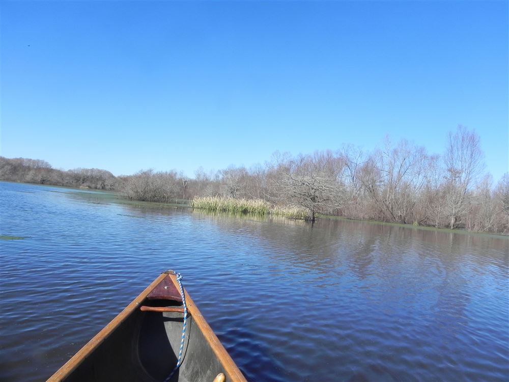 A great January paddle