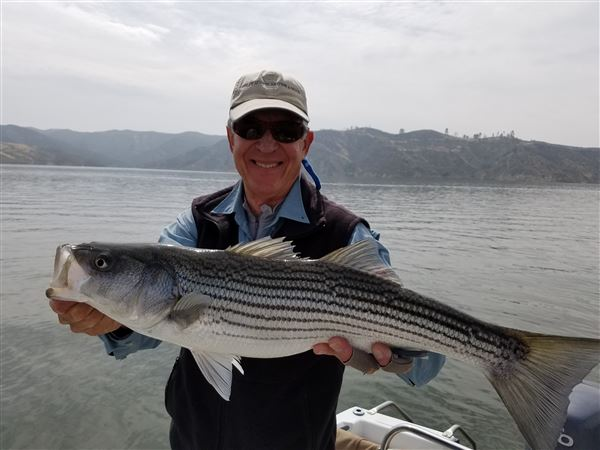 I went out fishing yesterday on Castaic with Larry Kurosaki. The Lake is fishing as well as I have ever seen it.  The water level is finally up to about normal with lots of new structure and cover.