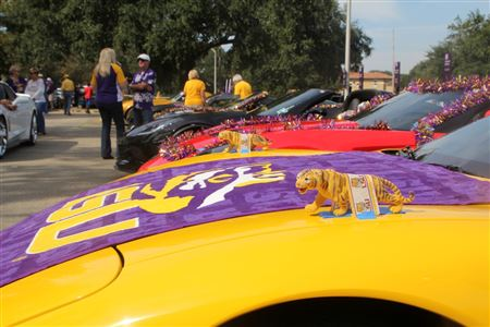 Over 30 Corvettes in our annual LSU Homecoming parade.  Always a good time and festive.
