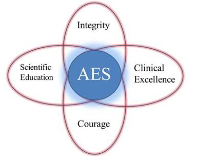 AES Core Values