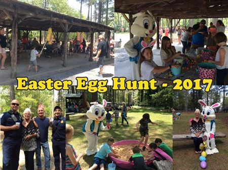 Easter Egg Hunt Photo