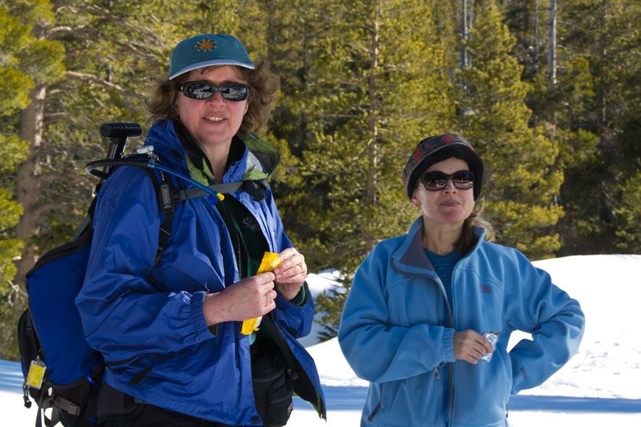 Our February 2011 Open Ski & Snowshoe Trip at Carson Pass
