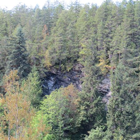 A trip to the lower Elwha River dam removal site below Hwy 101 on 31 Aug 2018.