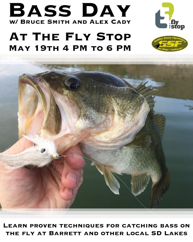 Bass Day at The Fly Stop