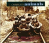 The Complete Animals (disc 2)