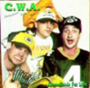 Cheeseheads For Life