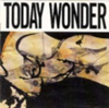 Today Wonder