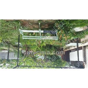 casa de 5 cuartos 200000 cuc  en vedado, plaza, la habana