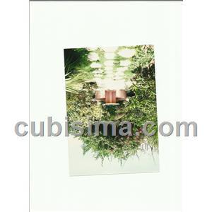 casa de 2 cuartos 35000 cuc  en calle primera nº5 camaguey, camagüey