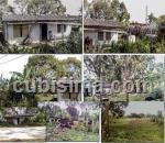 terreno $20000 cuc  en viñales, pinar del río