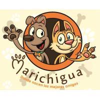 """• MARICHIGUA • """"El ATELIER DE LAS MASCOTAS"""", DONDE NANCEN LOS MEJORES AMIGOS. Telf: 7202-3083"""