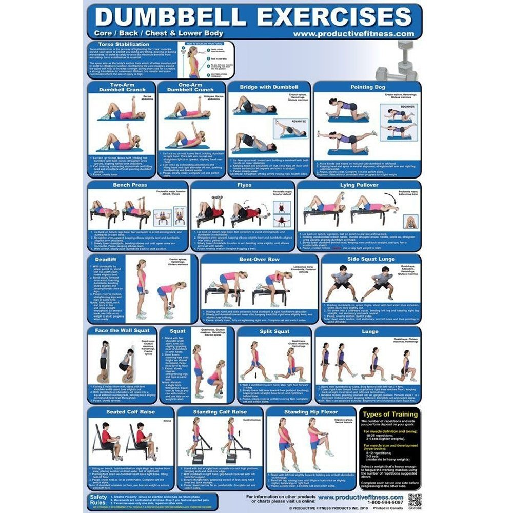 Dumbbell Exercises for At Home Use Poster (Back/Core, Laminated)