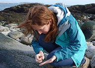 An Earthwatcher examines a tide-pool-dwelling snail.