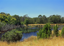 Freshwater research site, Melbourne