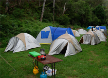 Rainforest camping on a research project in Australia