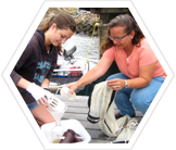 Contribute to Pacific coast datasets and help to conserve a valuable marine ecosystem.