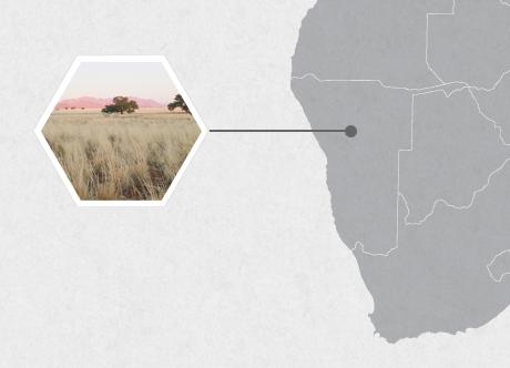 Otjiwarongo Namibia