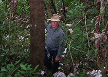 Dr. Mark Nelson in rainforest, Puerto Rico