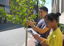 Earthwatch's Urban Forest Project, San Francisco
