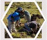canary-islands-archaeology- earthwatch