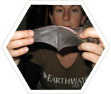 Bat research project, Melbourne, Australia
