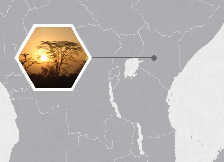 Ol Pejeta Conservancy, Nanyuki, Kenya, East Africa