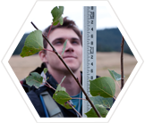 A volunteer measures the height of an aspen sapling.