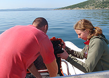 Dr. Joan Gonzalvo, lead scientist on Earthwatch expedition Dolphins of Greece
