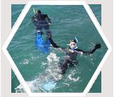 Volunteers snorkel to monitor sea grass.