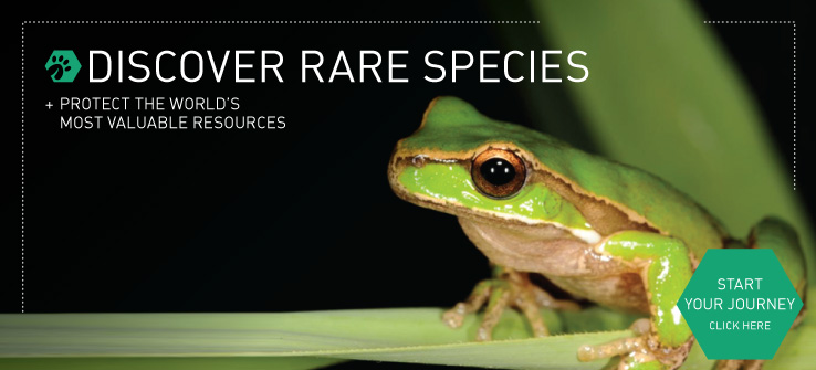Discover Rare Species and protect the world's most valuable resources