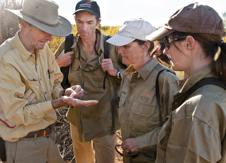 bush-blitz-earthwatch-science-research