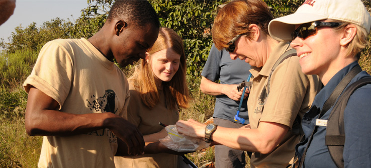 Earthwatch  volunteers examine signs of animal life in the field in Africa