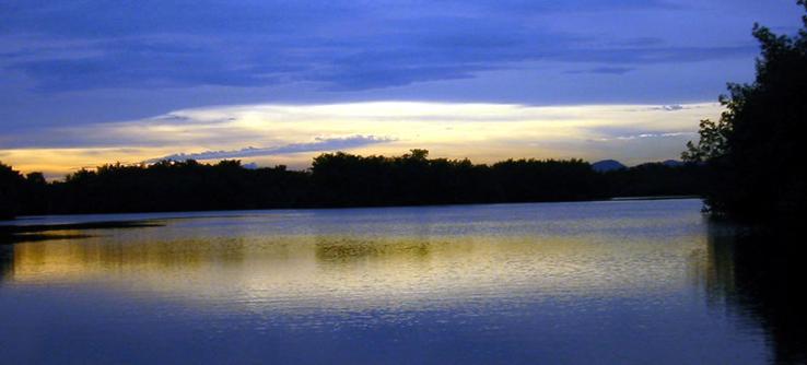 Matura Bay, Trinidad, Caribbean