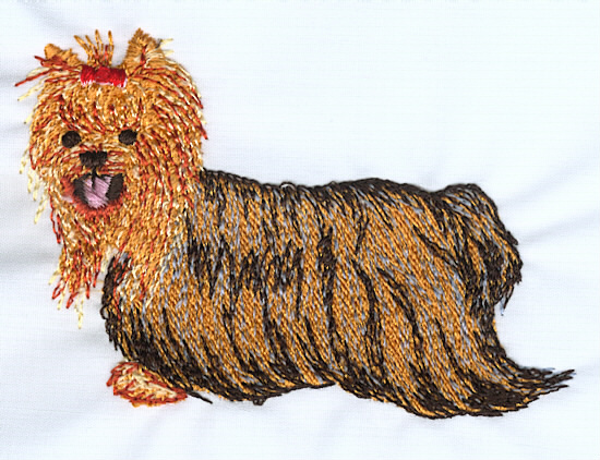 Yorkshire terrier z embroidery design by artistic