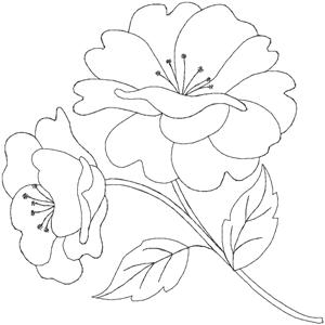 Quilters Flower 5 HDFQ5A Embroidery Design By Anita