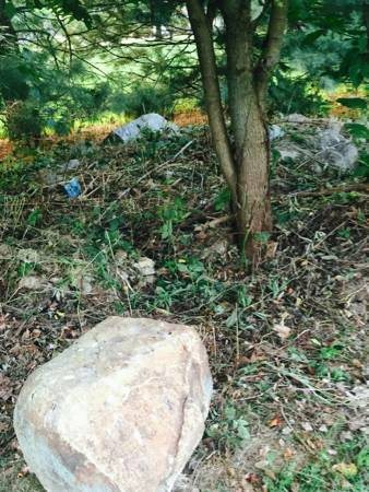 Need Help With Landscape Boulder Removal  Cover Photo