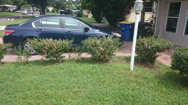 How Much To Spend on Landscaping