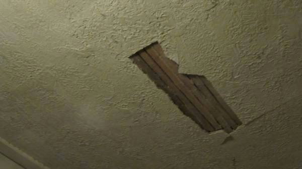 Plaster Ceiling Repair Cover Photo