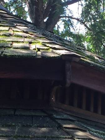 Need Roofer Cover Photo