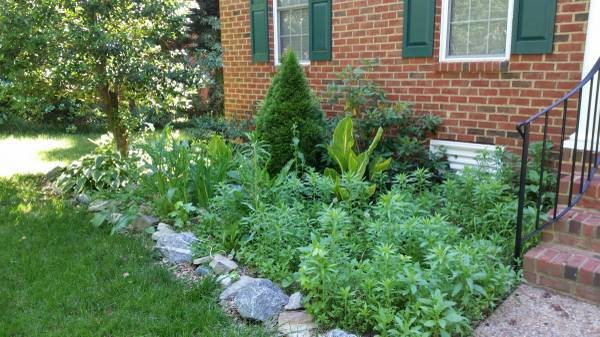 Landscaping Work Needed Cover Photo
