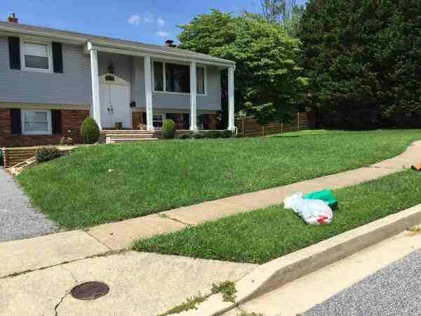 Need Lawn Mowed And Edged  Cover Photo
