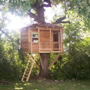 Treehouse Builder Cover Photo