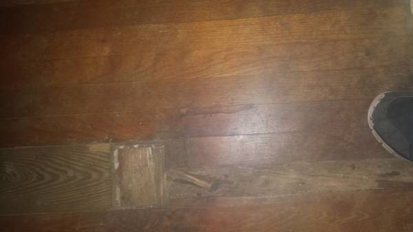 320 Square Feet Of Flooring Replaced Cover Photo