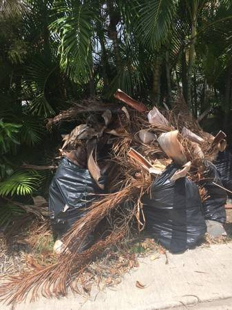 Haul Away Yard Waste      Cover Photo
