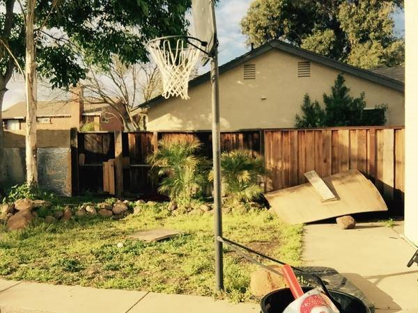 Cost To Landscape Backyard