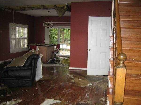 Water Damage  Cover Photo